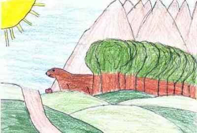 El oso y el bosque